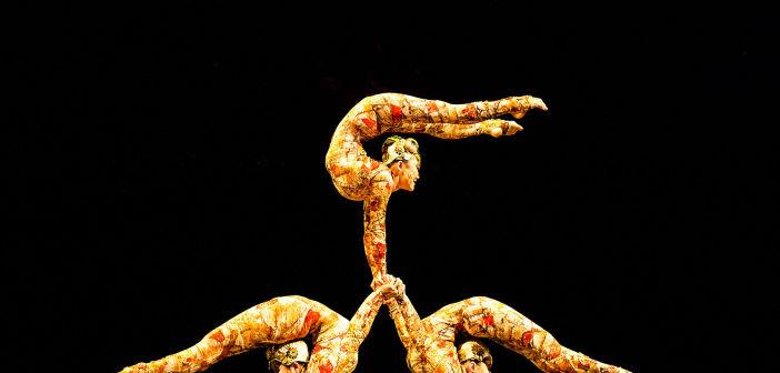 430_1cirque_du_soleil___kooza___disk_1_185_1_lynn_lane_dance_theater_photography_houston_texas