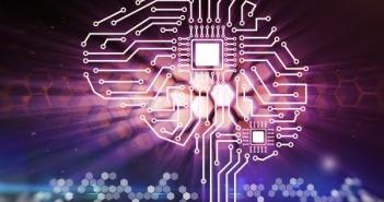 circuito-cerebro