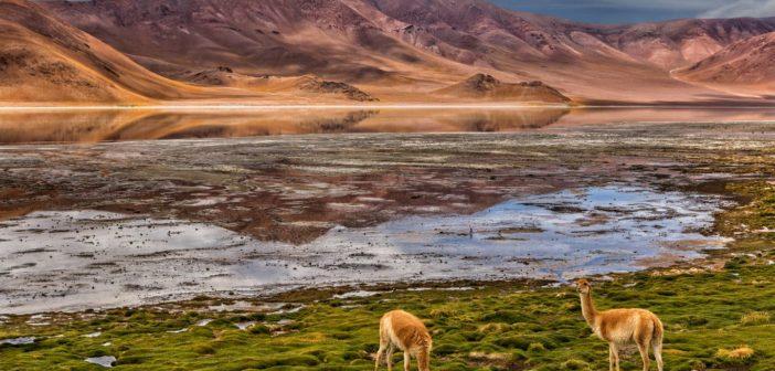 """""""Laguna Diamante"""", de Ricardo Martiniuk (FotoGrupo 30/40). Cóndor FAF - Mejor paisaje.."""