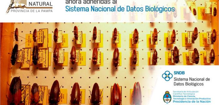 Museo de Historia Natural, abierto al mundo