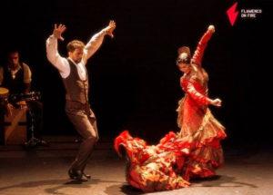 E.M.S. Festival Flamenco Pamplona