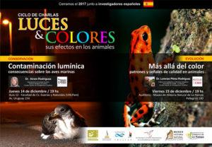 Luces y colores