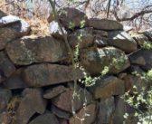 """Puesta en valor del sitio arqueológico """"Cerro de los viejos"""" (Cuchillo Có, La Pampa)"""